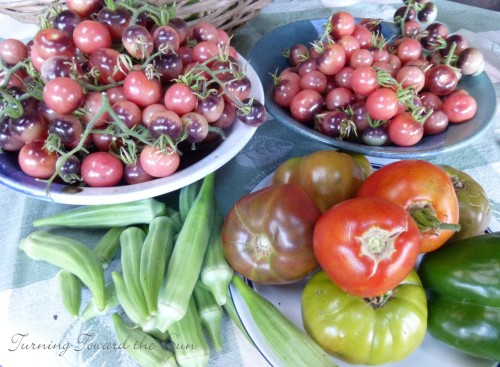 okra tomatoes